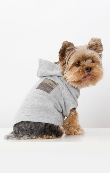 Camo Accent Dog Pullover