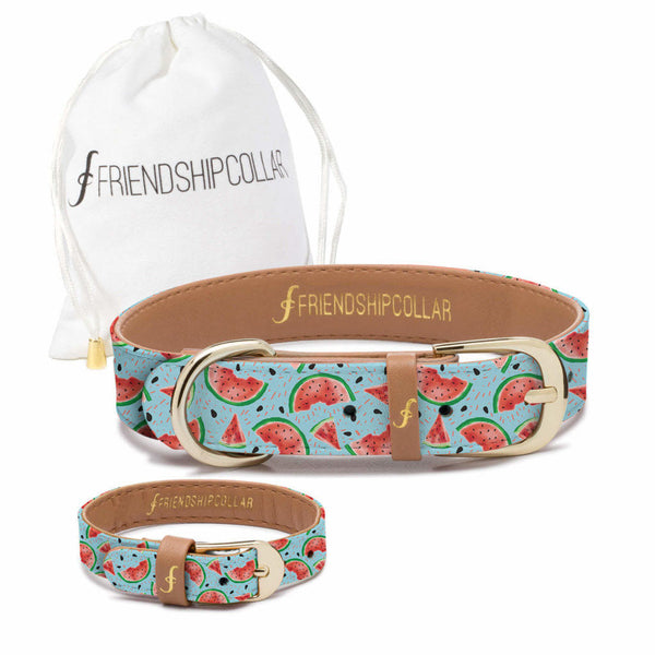 Friendship Collar & Bracelet Set