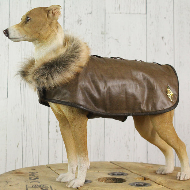 Brown Recycled Leather Dog Coat