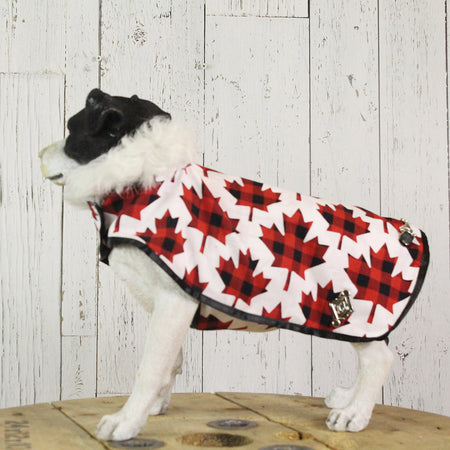 Canadian Dog Coat with Recycled Fur