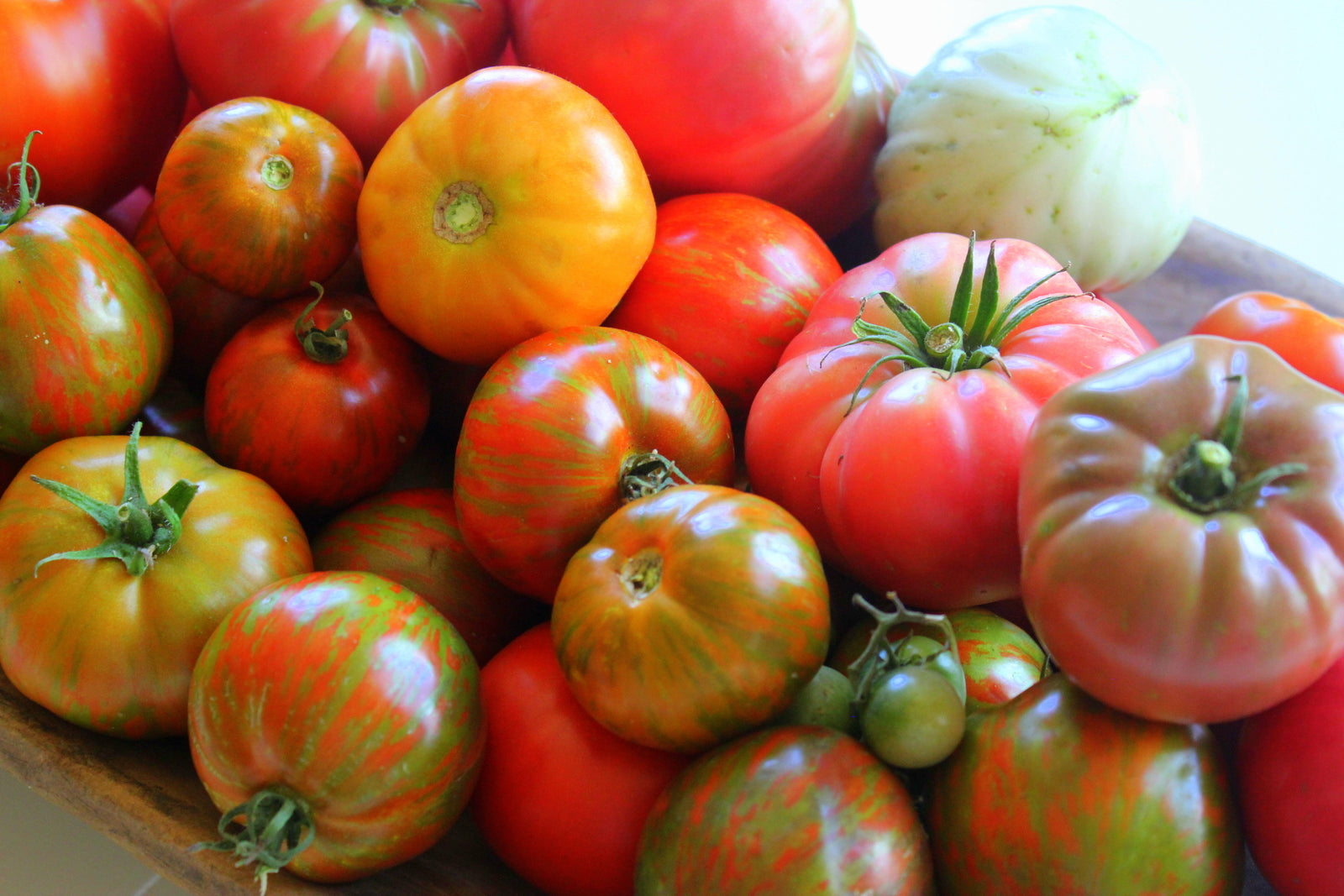 Shady Maple Acres Organic Tomatoes - Locally-Grown - Brennans Market