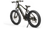 Electric Speed Bike