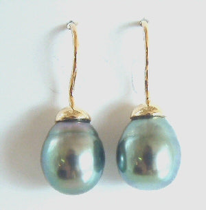 Tahitian South Sea Pearl Hook Earrings