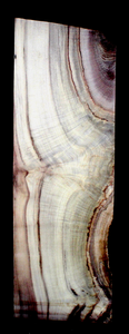 Myrtle Wood Natural Edge Table Slab MY1167I