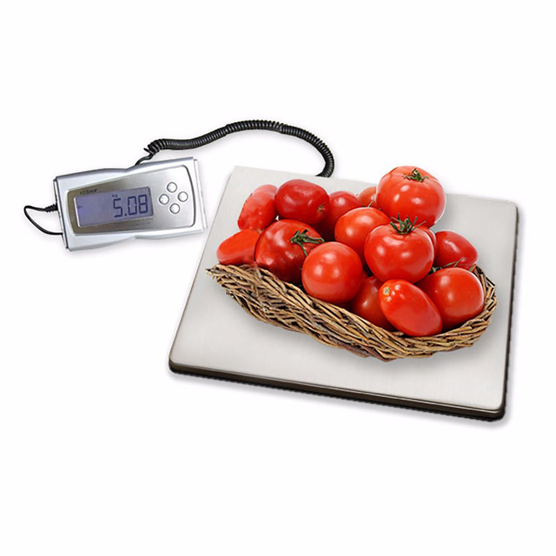 Digital Scale (330lb)