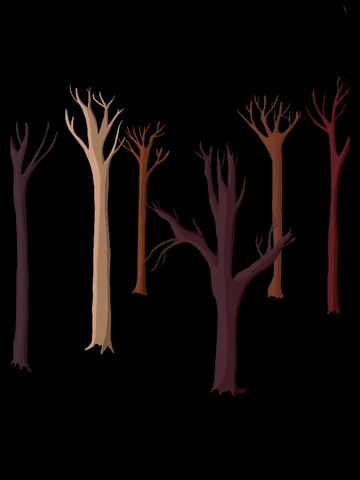 rainforest trees drawing