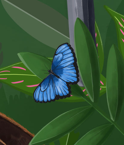 bright blue tropical butterfly drawing