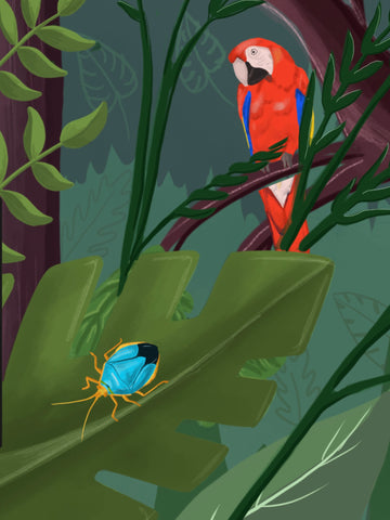 digital drawing of tropical birds and bugs-crop of main image