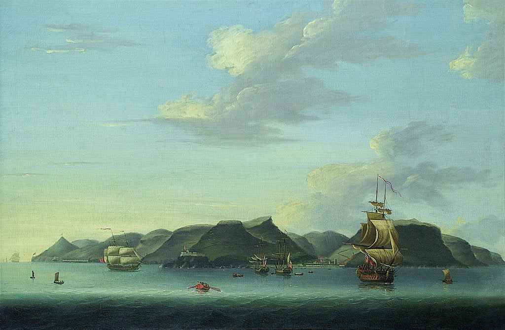 Detail of Shipping off Saint Helena by Adam Callander