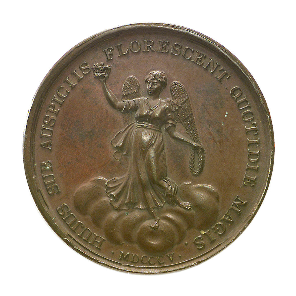 Detail of Medal commemorating the victories under George III; reverse by J. Westwood