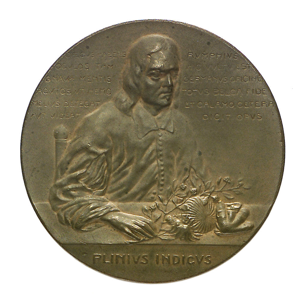 Detail of Medal commemorating the bicentenary of G.F. Rumphius (1627-1702); obverse by unknown