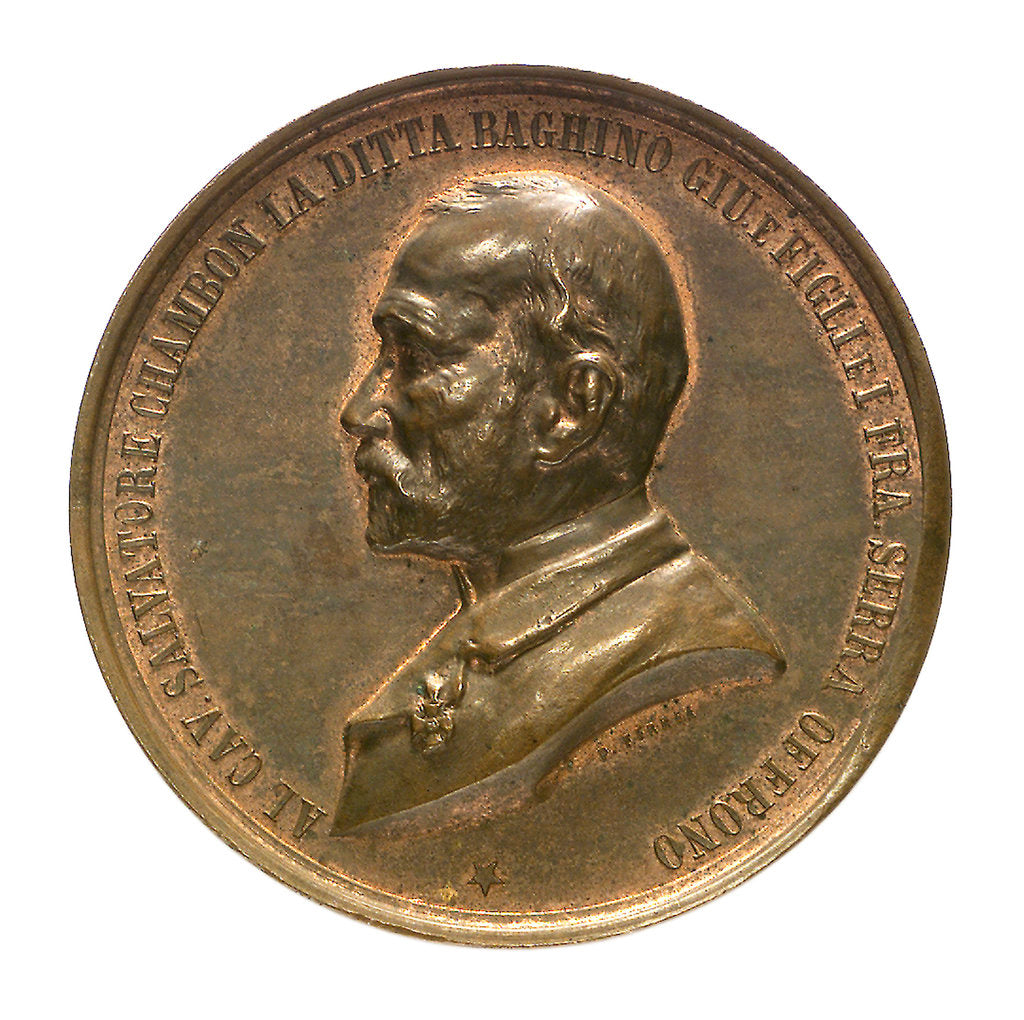 Medal commemorating the raising of HMS 'Sultan', 1889; obverse by P. Ferrea