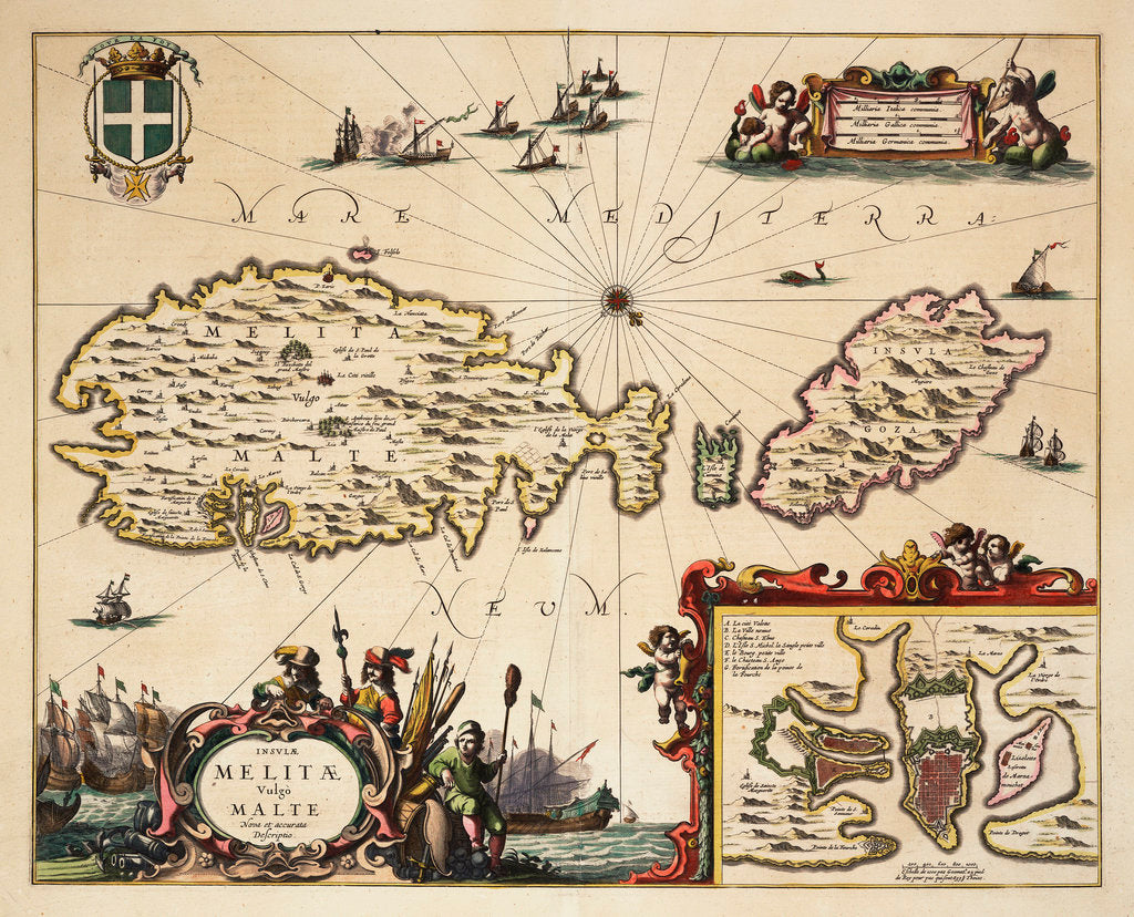 Detail of Map of Malta and Gozo by unknown