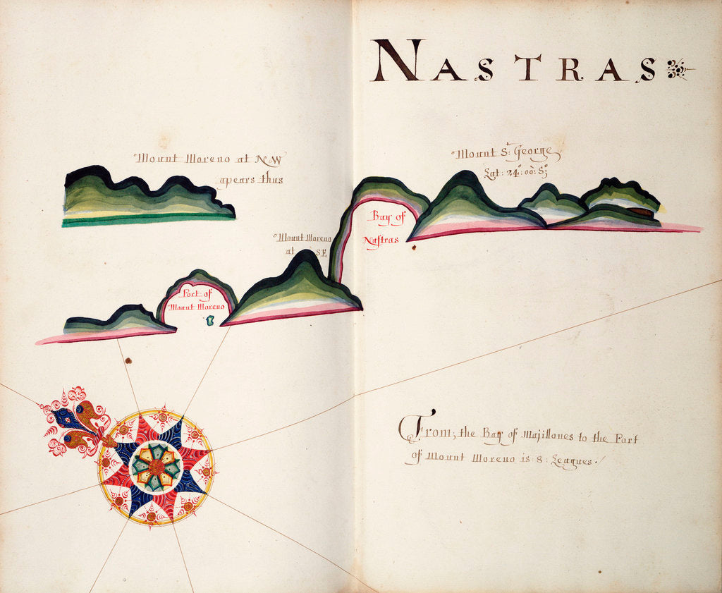 Detail of Nastras, South American Pacific coast by William Hack