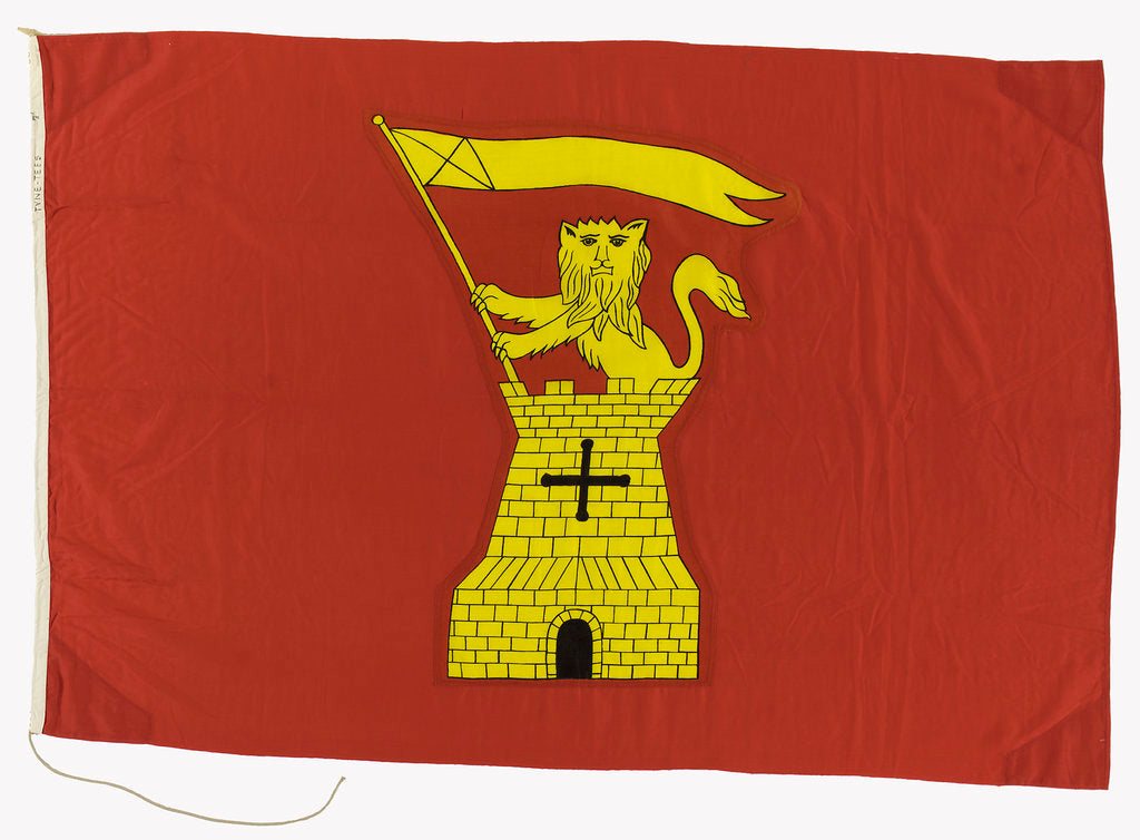 Detail of House flag, Tyne-Tees Steam Ship Co. Ltd by unknown