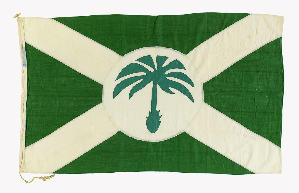 Detail of House flag, Palm Line Ltd by unknown