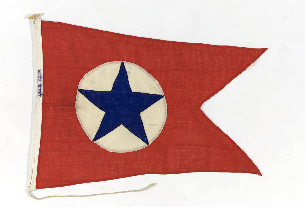 Detail of House flag, Blue Star Line Ltd by unknown