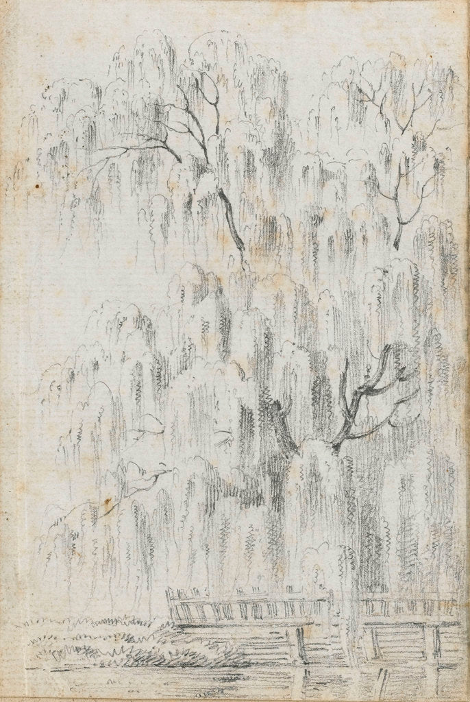 Detail of Study of a tree overhanging water at Merton (recto) by Thomas Baxter