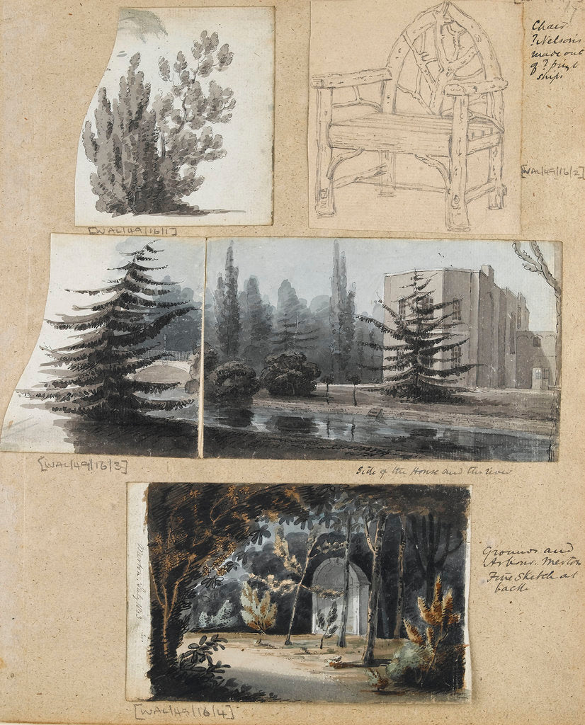 Detail of A study of a shrub and and chair, views of Merton Place by Thomas Baxter