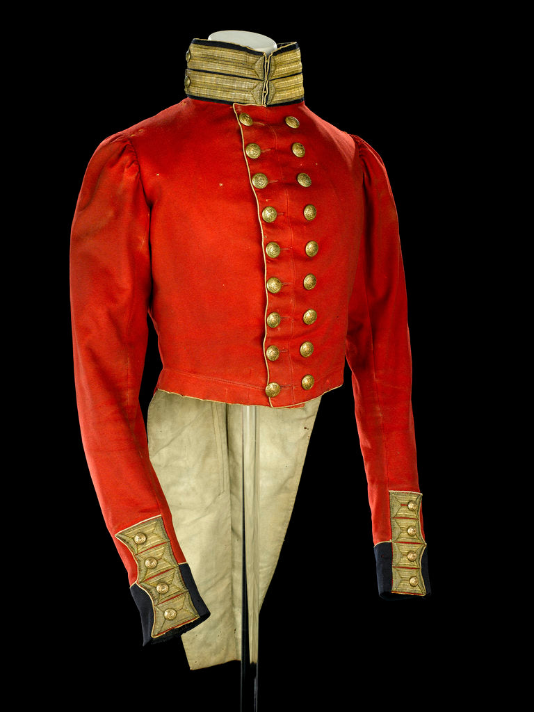 Detail of Coatee, Royal Marines uniform: pattern 1830 by unknown