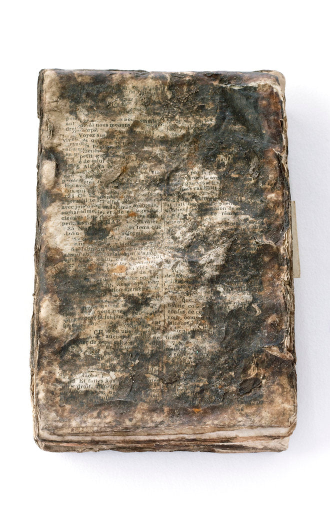 French New Testament' front by unknown