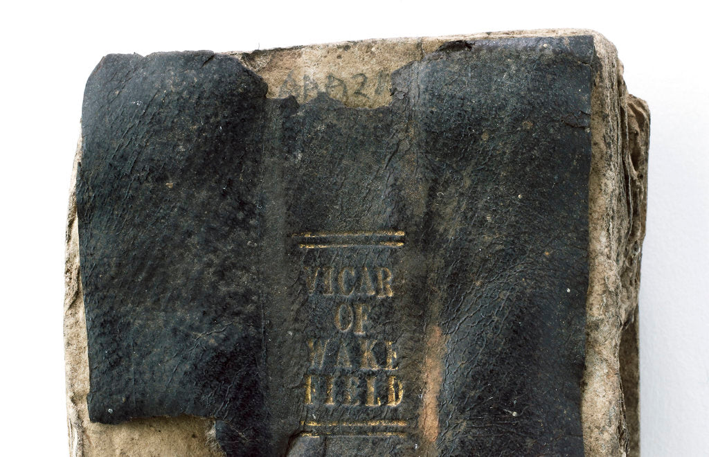 Detail of The Vicar of Wakefield' spine detail by unknown