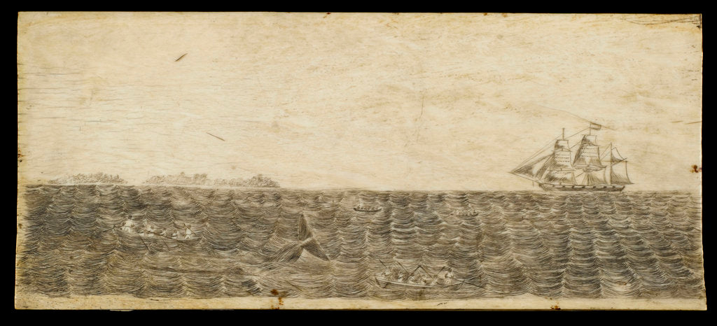 Detail of A whalebone panel engraved with a scene showing a whaling vessel in full sail on the horizon by unknown