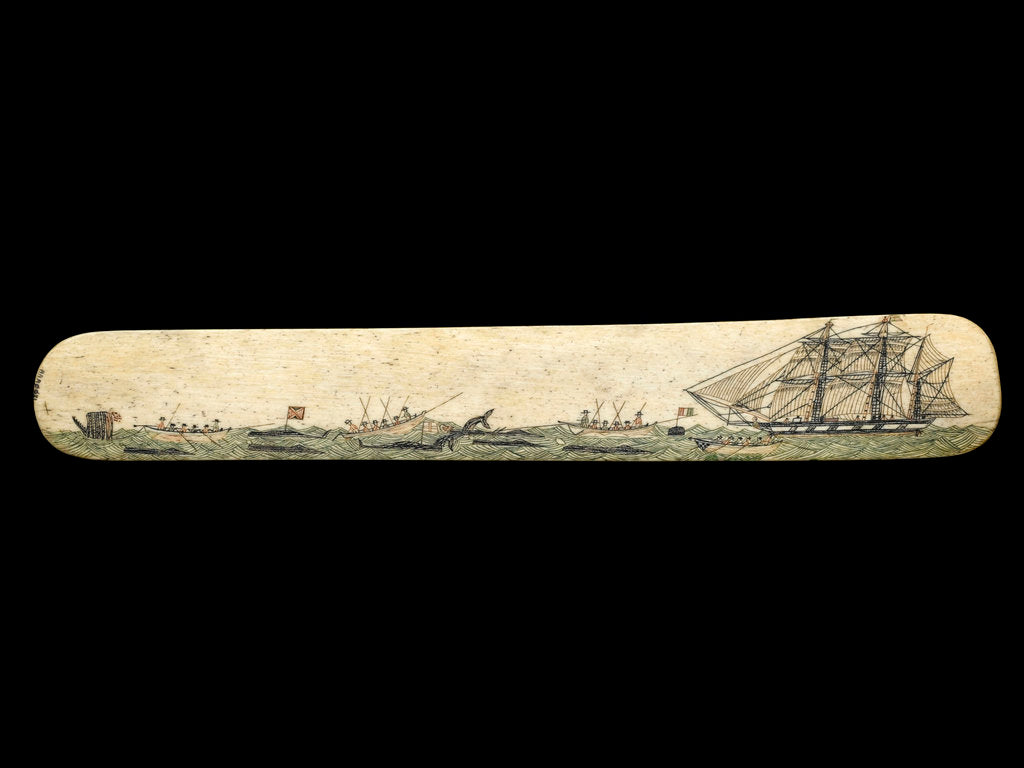 Detail of A scrimshaw staybusk made of whalebone by unknown