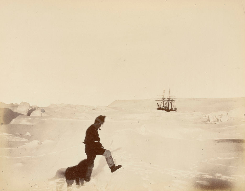 Detail of Winter quarters of the 'Alert'; Cape Rawson in the distance; Mr White and 'Nelly', during British Arctic Expedition, 1875-1876. by George White