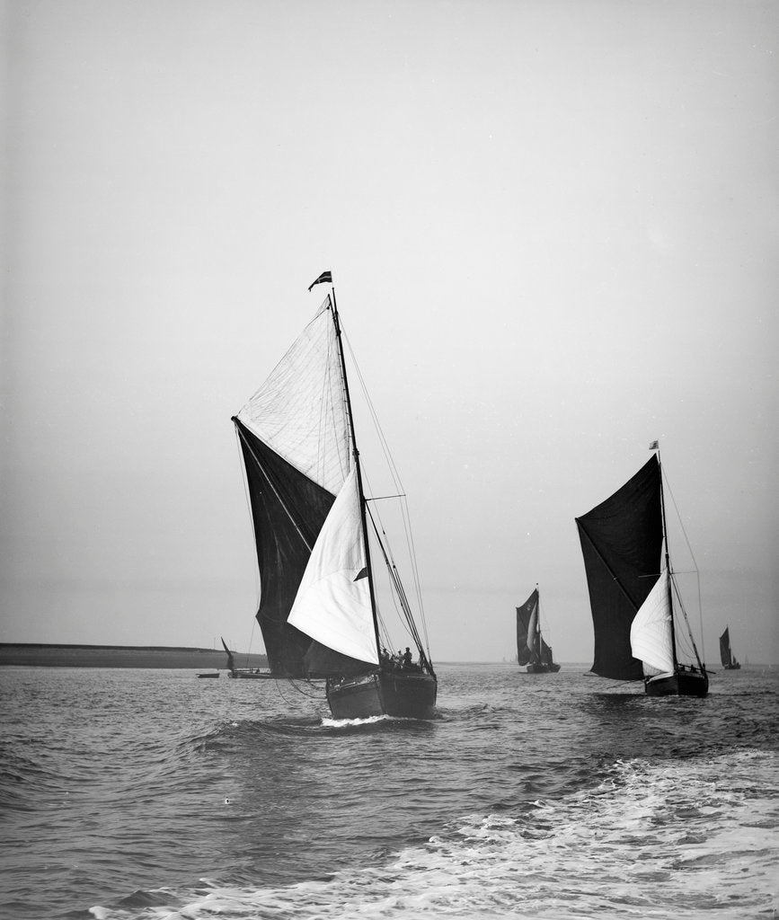 Detail of Sailing barge 'Sirdar' (Br, 1898) racing with other barges in the 1899 Thames Barge Match by Anonymous