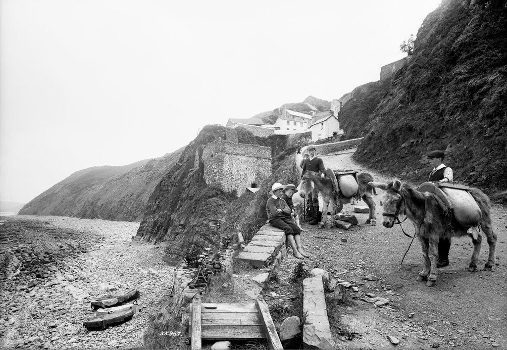 Pack donkeys, Bucks Mills, Devon by National Maritime Museum