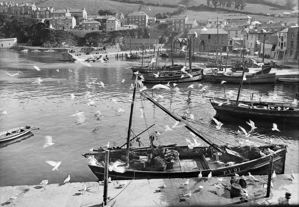 Detail of Harbour and flock of seagulls, Mevagissey, Cornwall by National Maritime Museum