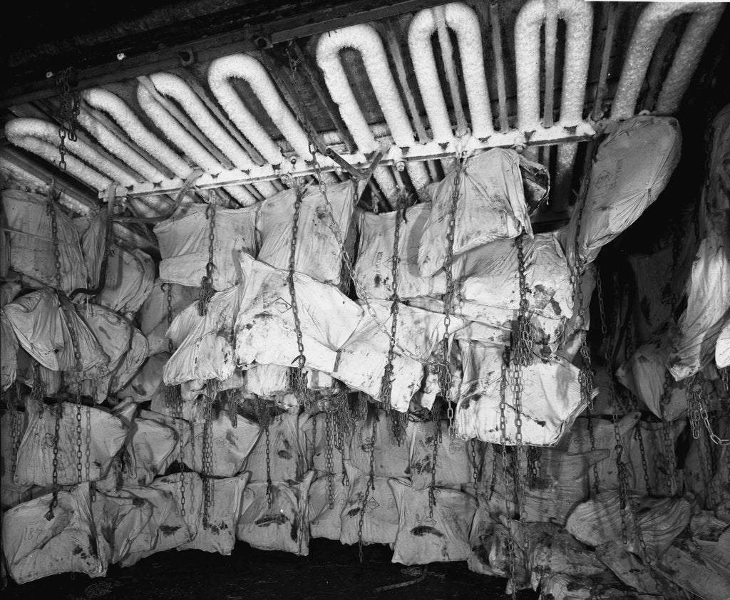 Detail of Frozen meat in the hold of the 'Highland Rover' (1910) by Bedford Lemere & Co.
