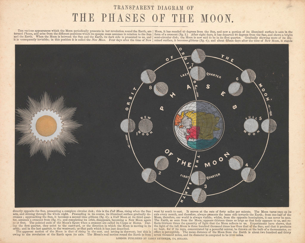 Detail of Transparent Diagram of the Phases of the Moon by James Reynolds