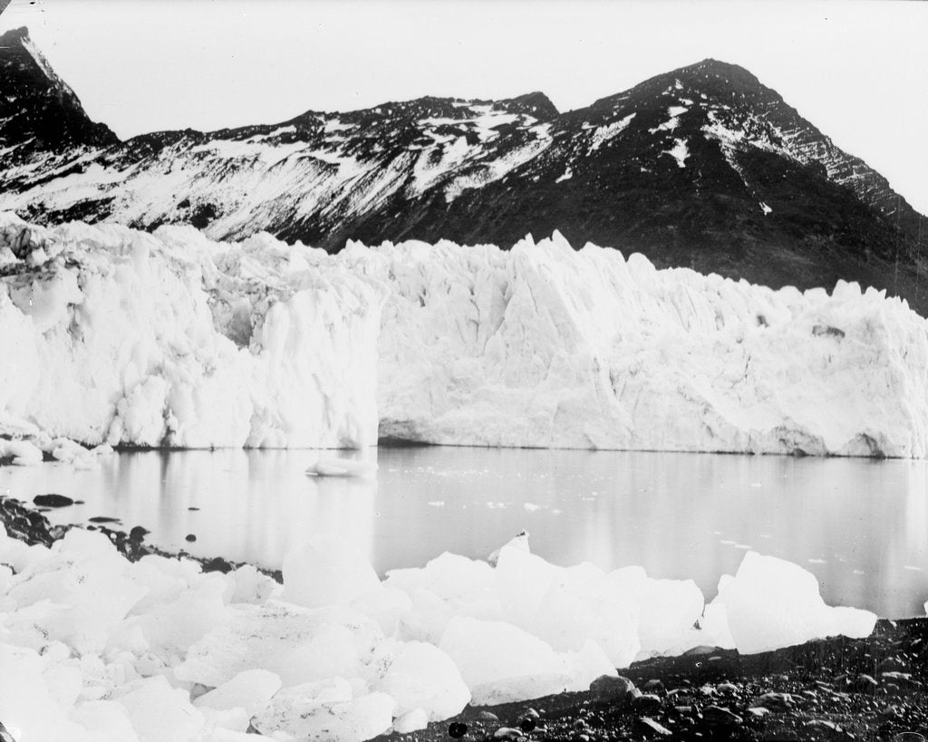 Detail of Hamberg Glacier, Moraine Fjord, South Georgia by unknown