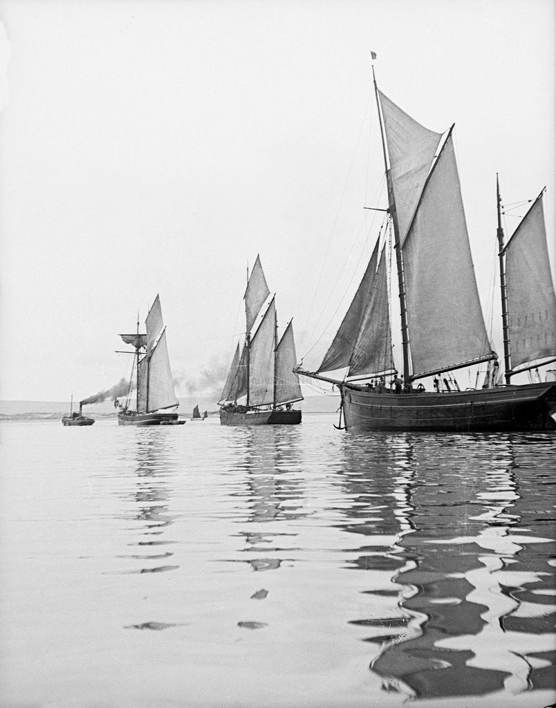 Detail of A tug and sailing vessels on the River Torridge off Appledore in Devon by unknown