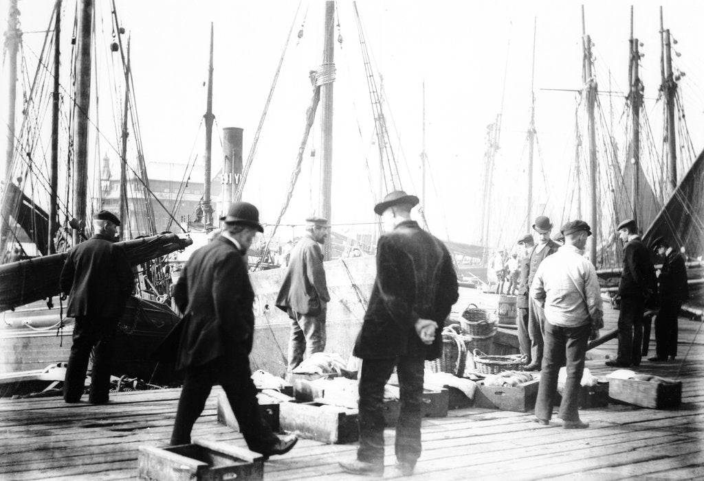 Detail of Unloading the catch in Lowestoft Harbour, with the South Pier Pavilion in the background by Smiths Suitall Ltd.