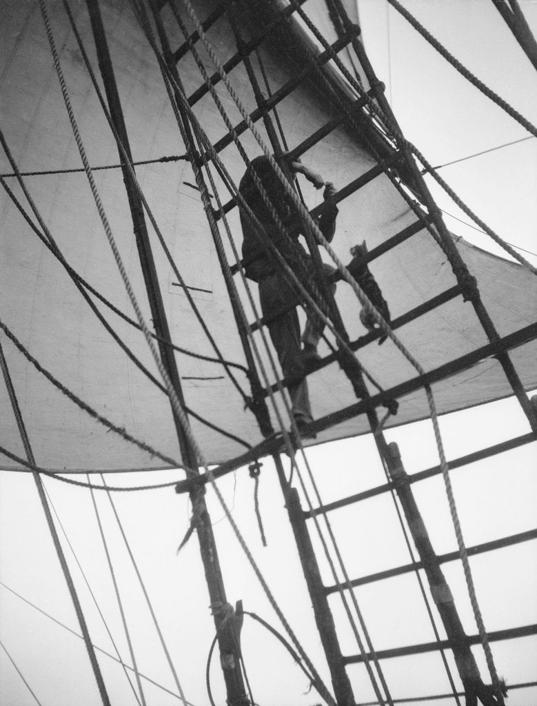 Detail of A seaman enticing the ship's cat up one of the shrouds of 'Pommern' (Fi, 1903) 4 masted barque, ex 'Mneme', Gustaf Erikson by unknown