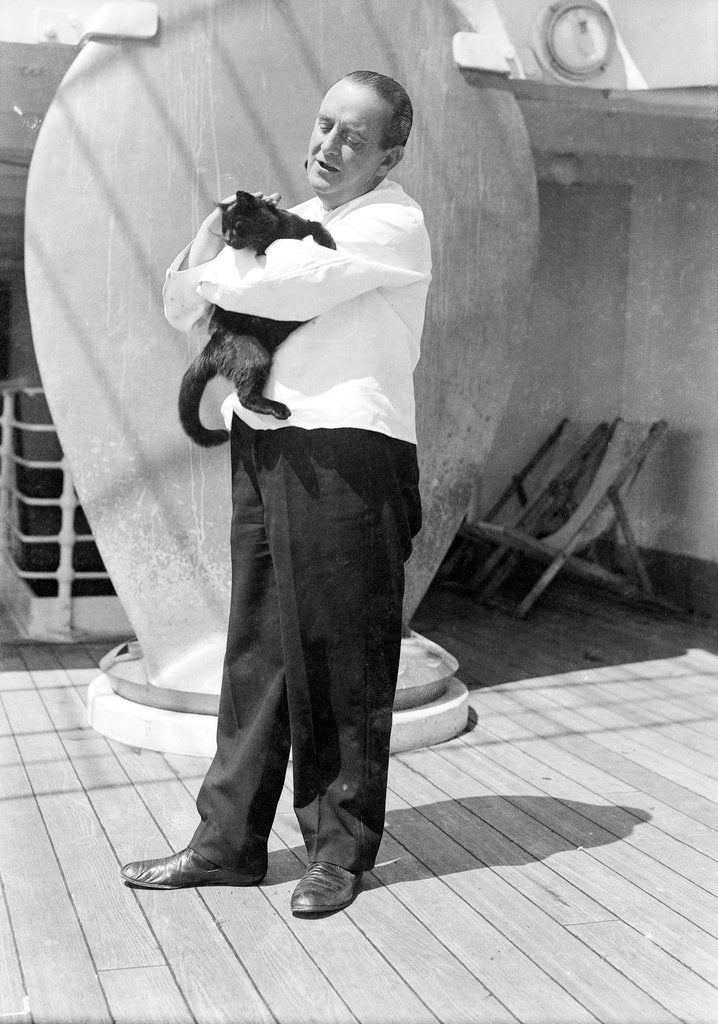 Detail of Steward with ship's cat by Marine Photo Service