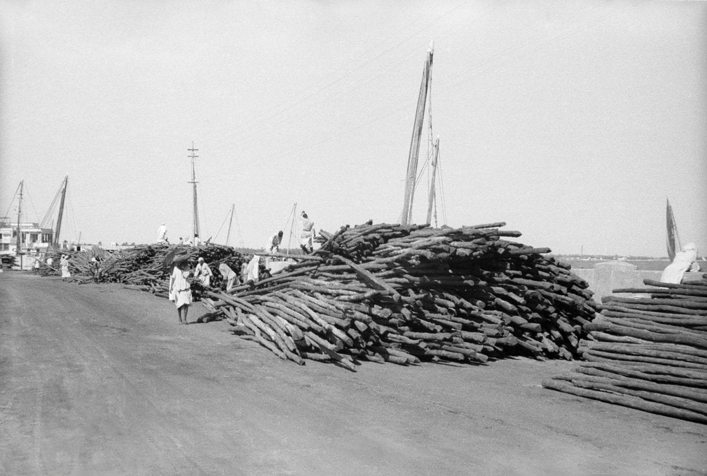 Detail of The Manama waterfront was soon lined with stacks of Rufiji and Lamu poles by Alan Villiers