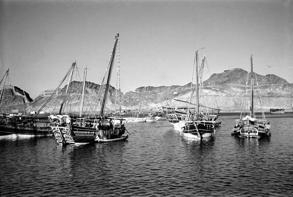 Detail of Zarooks and sambuks ride at anchor, Ma'alla, Aden by Alan Villiers
