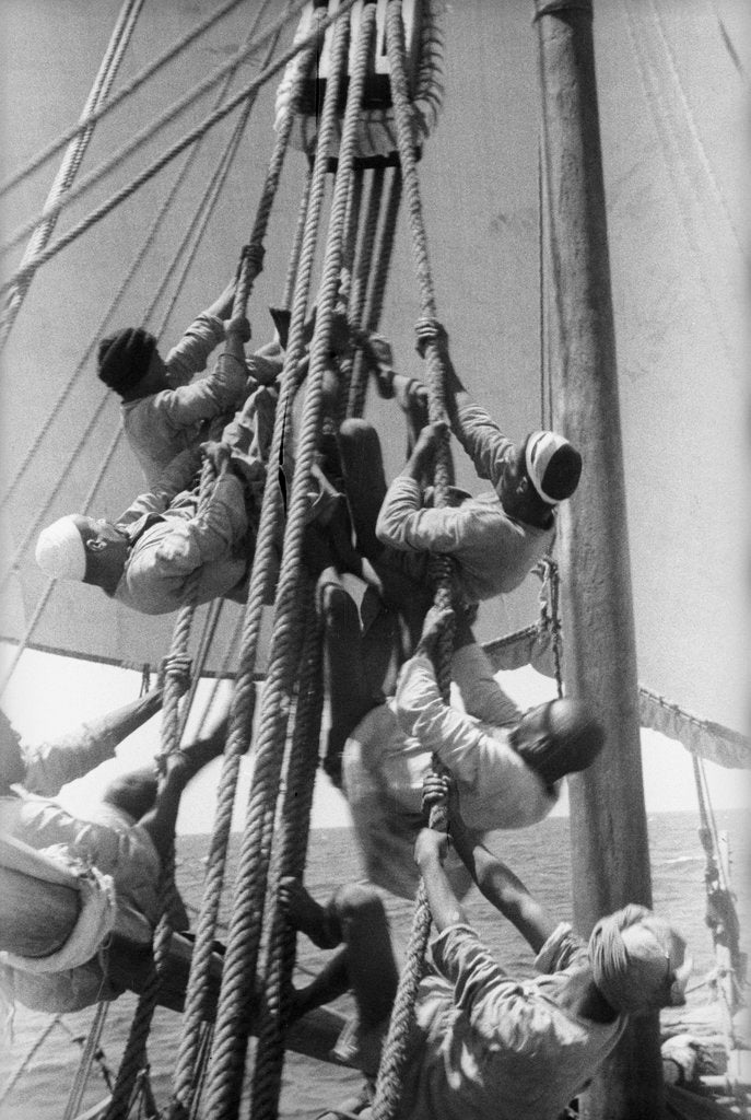 Sailors climbing the halyard blocks by Alan Villiers