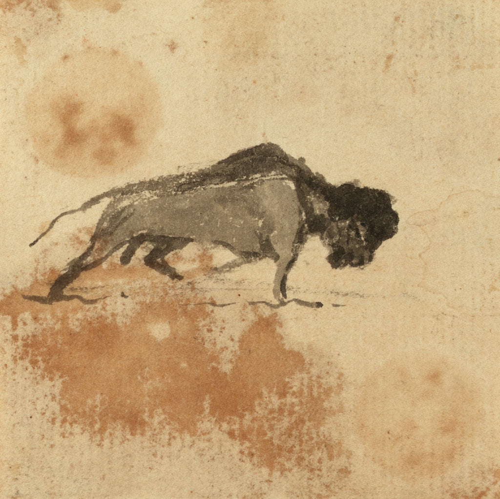 Detail of Sketch of a bison by Gabriel Bray