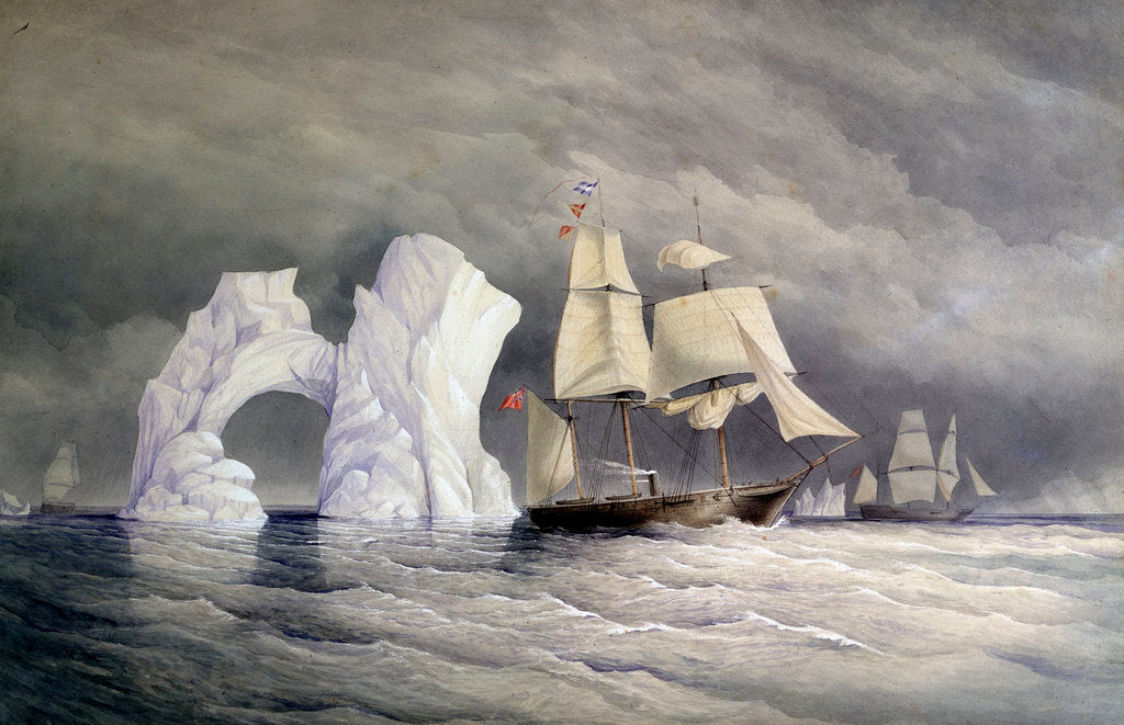 Detail of HMS 'Phoenix', 'Talbot' and 'Diligence' passing a remarkable iceberg by Edward Augustus Inglefield