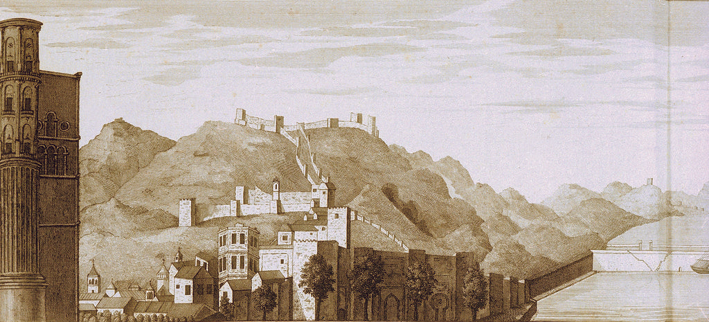 Detail of West view of the mole of Malaga seen from one of the towers of the cathedral by Francis Carter
