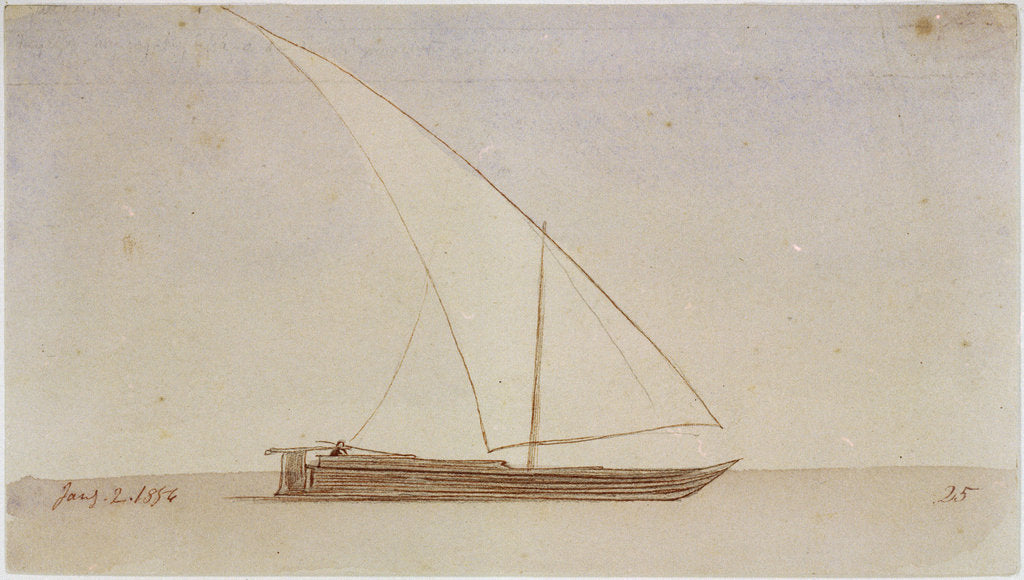 Detail of Study of a gyassis by Edward Lear