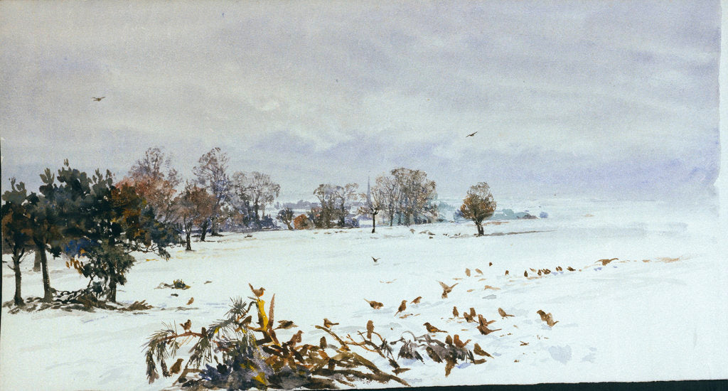 Detail of A landscape under snow with a flock of feeding birds in the foreground by William Lionel Wyllie