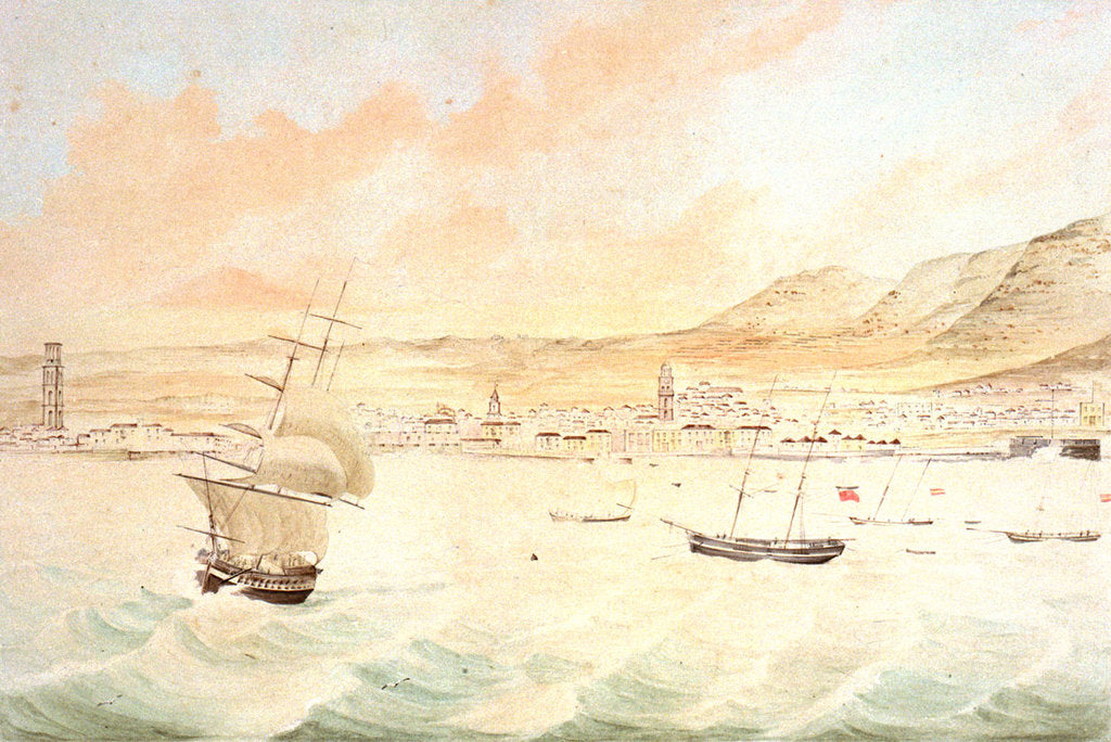 Detail of Santa Cruz in Tenerife by J. J. Williams