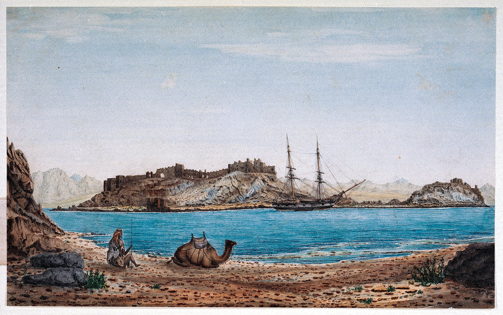 Detail of Island of Faroun near the head of the Sea of Akabah.... by Robert Moresby