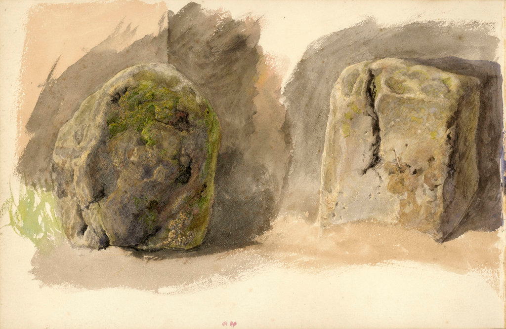 Detail of Studies of lichen covered boulder and a stone block (on reverse) by John Brett